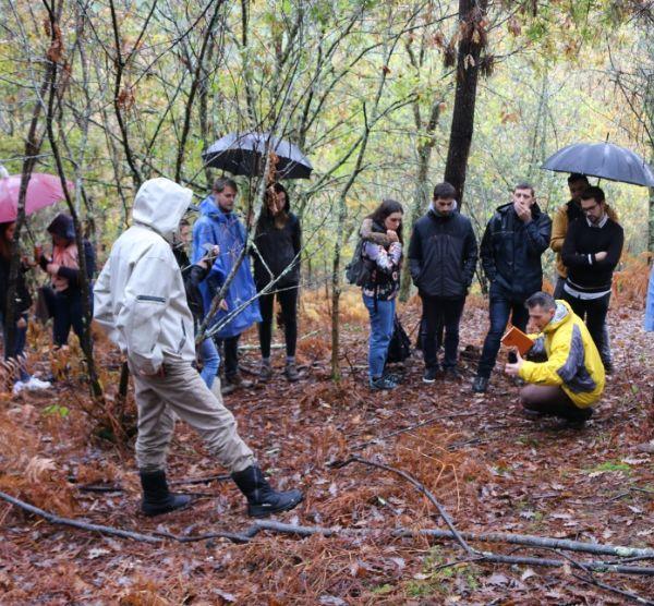 Certificação florestal FSC® e preservação da floresta autóctone