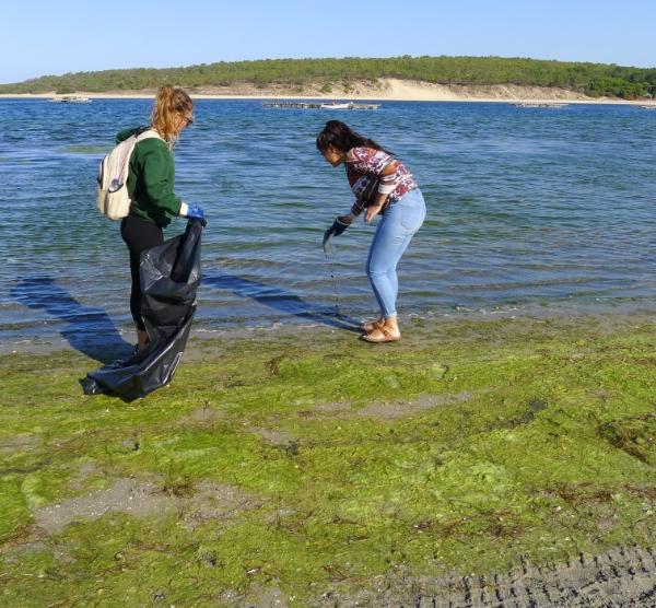Limpeza das margens da Lagoa de Albufeira