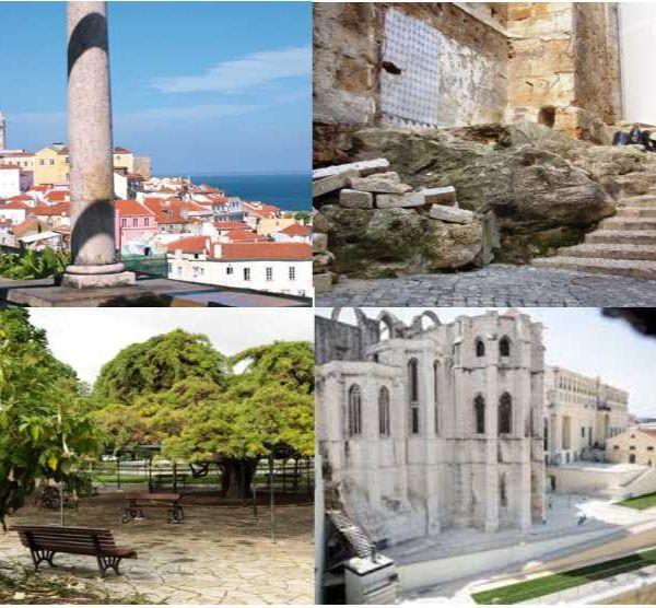 Na rota da geodiversidade e biodiversidade pelas ruas seculares de Lisboa