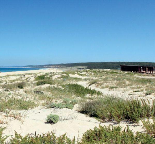 Parque Natural da Arrábida - Cabo Espichel - A Flora Mediterrânica