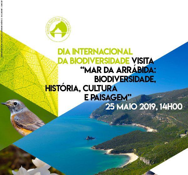 Visita: Mar da Arrábida: Biodiversidade, História, Cultura e Paisagem