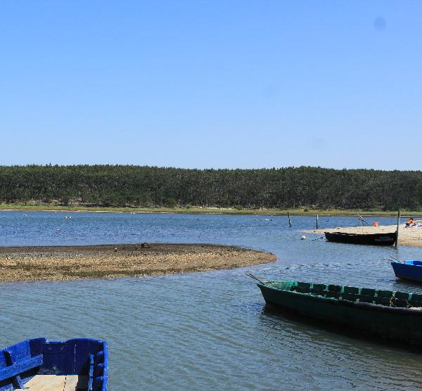 Informação e Auscultação local, Lagoa de Óbidos