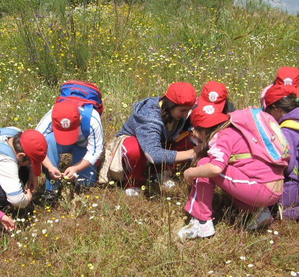 Educação na Natureza