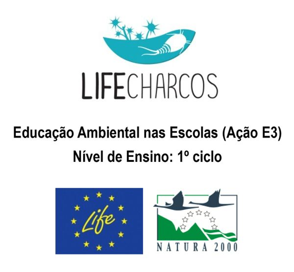 Educação Ambiental nas Escolas (Ação E3), 1º ciclo, Questionário inicial