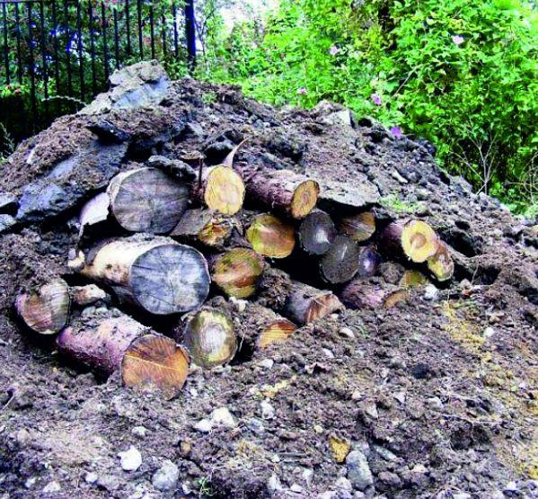 Construção de aglomerados de pedra e/ou lenha