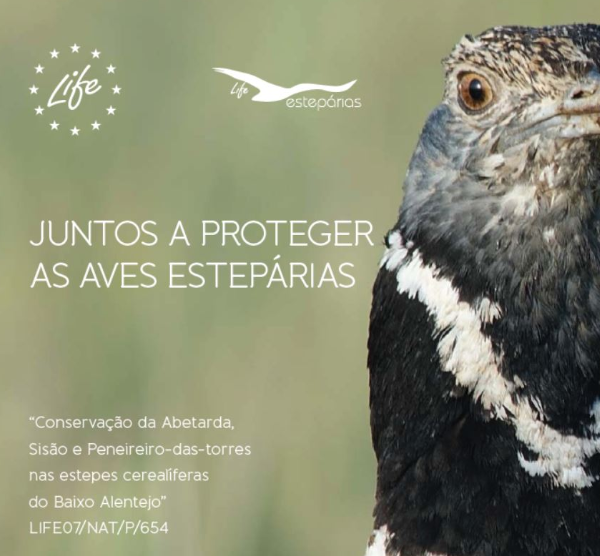 Brochura - Juntos a proteger as aves estepárias