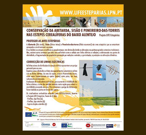 Cartaz LIFE Estepárias - Conservação da Abetarda, Sisão e Peneireiro-das-torres nas estepes cerealíferas do Baixo Alentejo