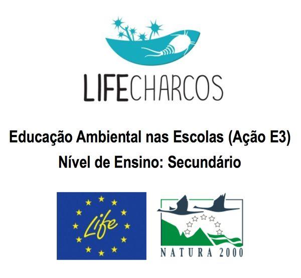 Educação Ambiental nas Escolas (Ação E3), Secundário, Questionário inicial