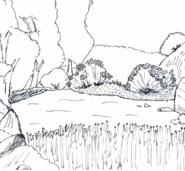 Habitat do saramugo