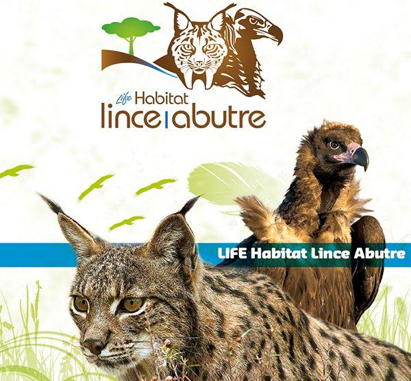 Folheto de Apresentação LIFE Habitat Lince Abutre