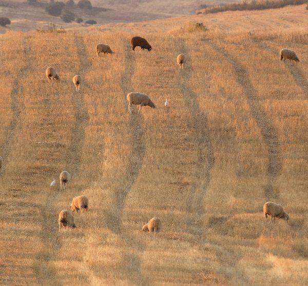 Documentário do Projeto Rural Value - Parte 2