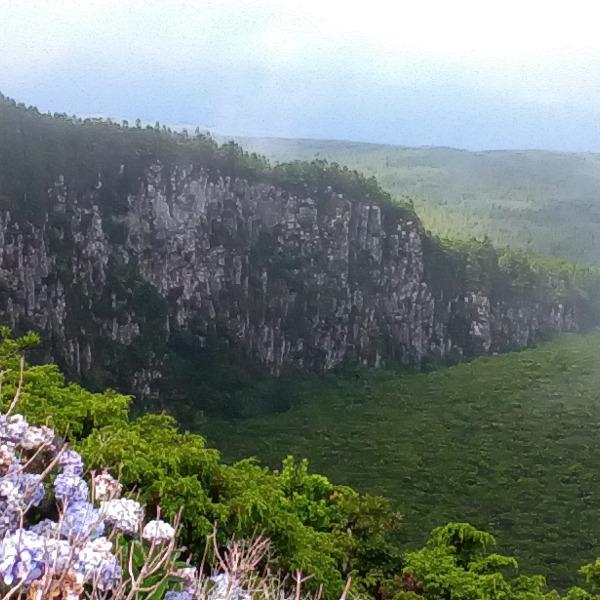 Fórum Participativo – Educar para o Património Natural - A Natureza como um bem não renovável.