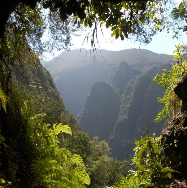 Roteiros de Biodiversidade e Geodiversidade na Região Autónoma da Madeira