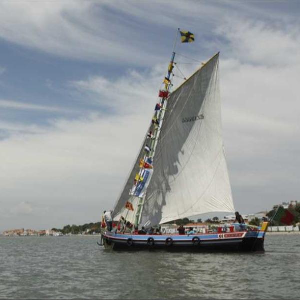 Estuário do Tejo – Navegando e caminhando ao encontro do património natural do Seixal