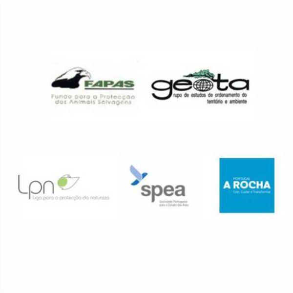 Organizações Não-Governamentais de Ambiente Chumbam EIA do Aeroporto do Montijo