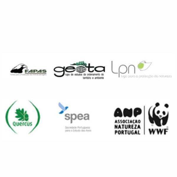 Coligação de ONGA, Associações da Caça e Tutela assinam memorando sobre a caça à rola