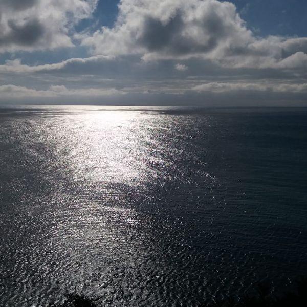 Associações de Defesa do Ambiente aplaudem decisão de continuar o processo de criação de Áreas Marinhas Protegidas