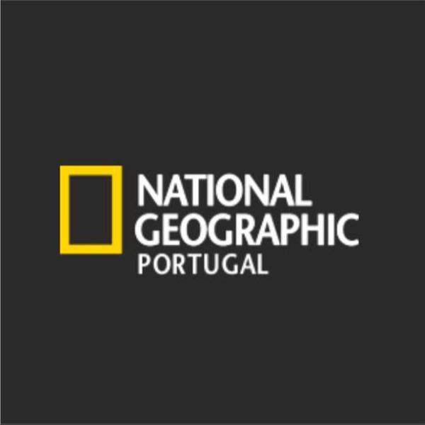 Nas águas do Parque Marinho Professor Luiz Saldanha na Arrábida