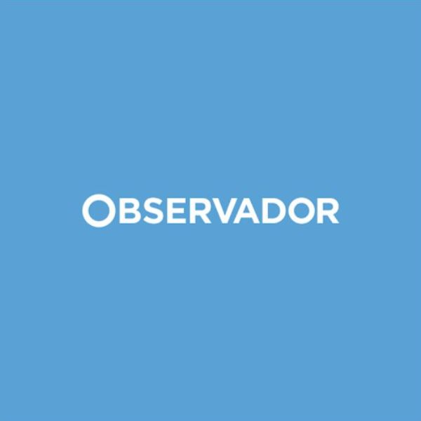 """Associações querem respostas por remoção """"total"""" de vegetação em Cacela Velha"""