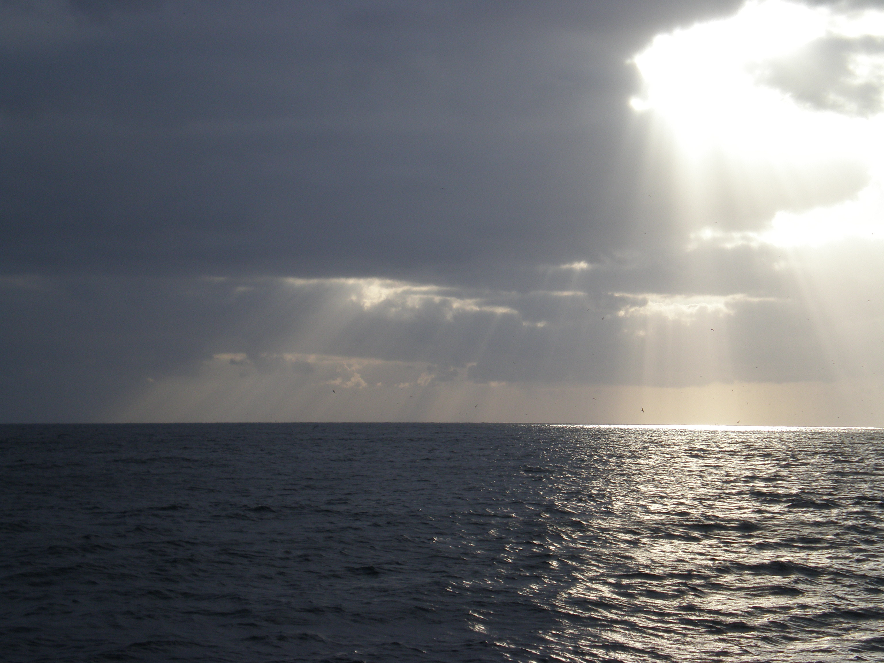 PONG-Pesca pede respeito pelos pareceres científicos