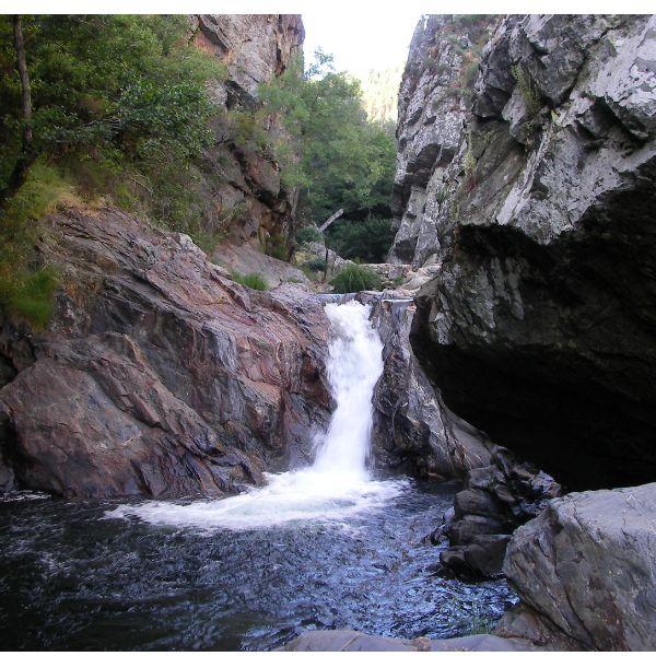 Ministério do Ambiente tem de fazer muito mais pelos nossos rios e ribeiras!