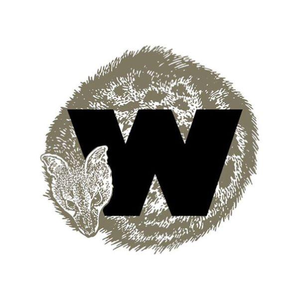 Já há sete ninhos artificiais para a águia imperial no Alentejo