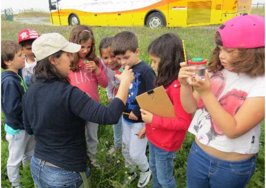 Disciplina da Biosfera nas escolas de Castro Verde