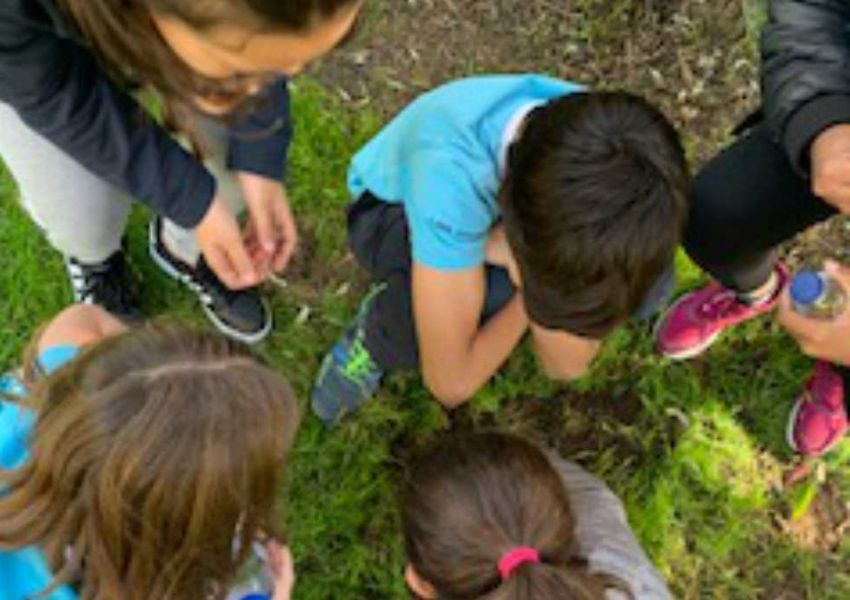 Atividades sobre o solo no colégio Oriente