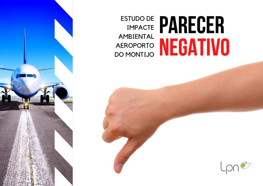 Estudo de Impacte Ambiental: Aeroporto do Montijo