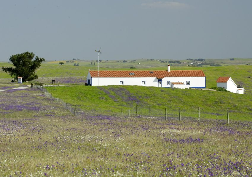 Reabertura do Centro de Educação Ambiental do Vale Gonçalinho