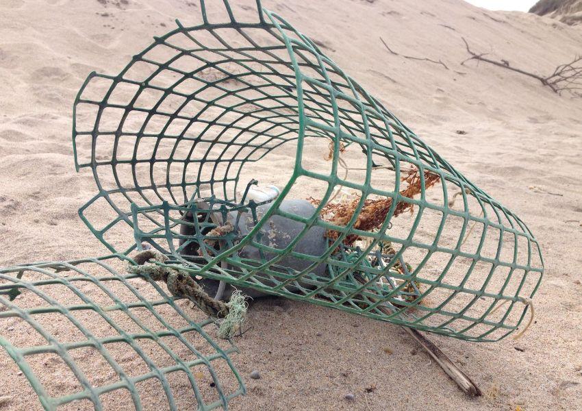 Vamos limpar as nossas praias, de norte a sul