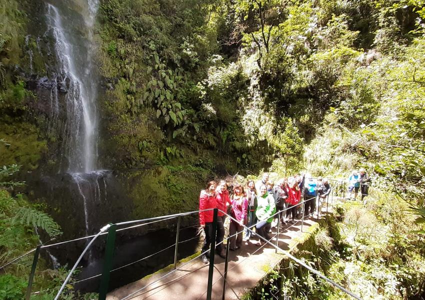LPN na Região Autónoma da Madeira