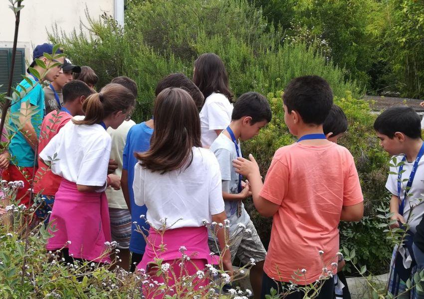 Detetives da biodiversidade no jardim da LPN