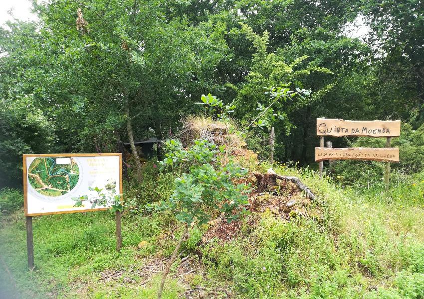 Quinta da Moenda, um exemplo de boas práticas de restauro ecológico