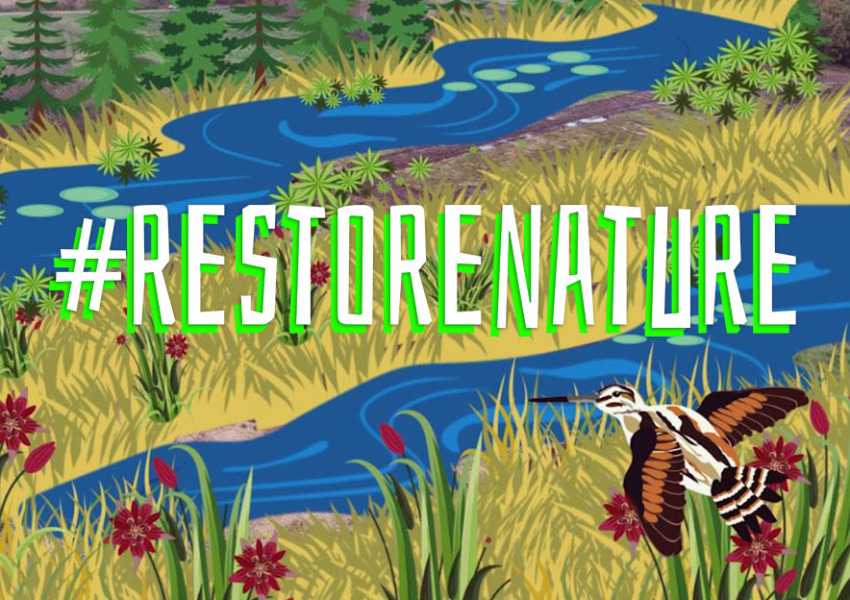 LPN joins the Campaign Restore Nature
