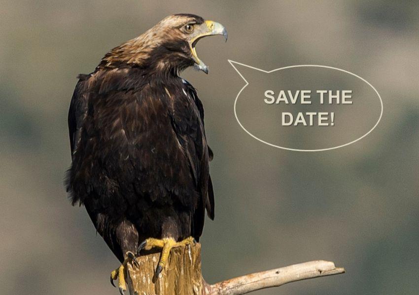 Seminário: Conservação de Aves de Rapina - Castro Verde