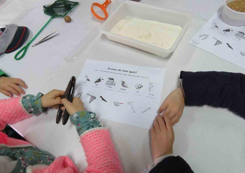 LPN associa-se a projeto de Ensino das Ciências