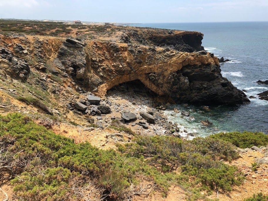 Biodiversidade em perigo do PNSC