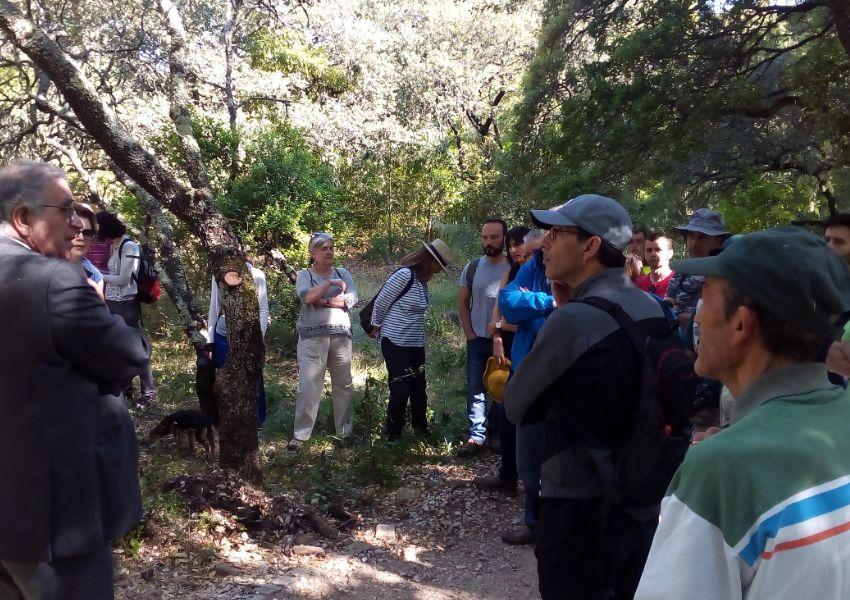 O Parque Florestal de Monsanto está mais perto das pessoas
