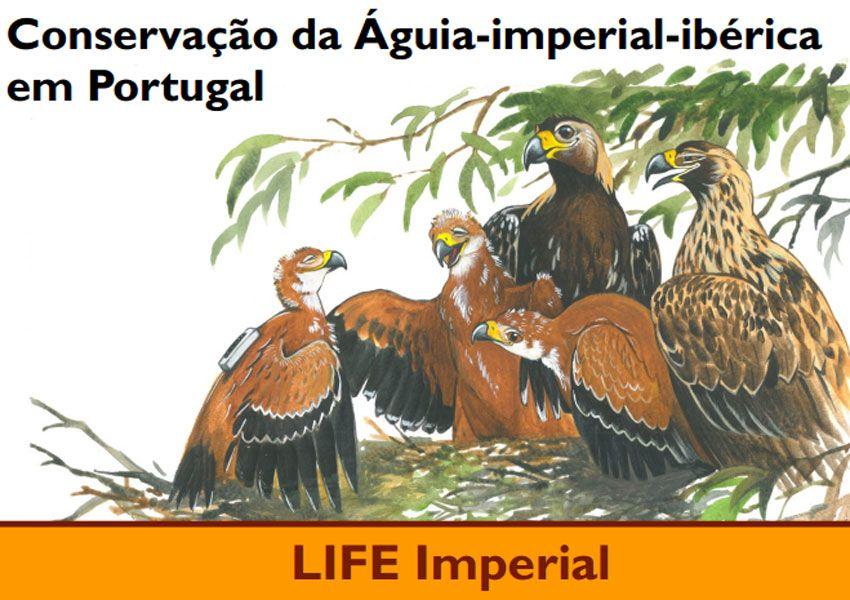 4ª Edição do Boletim Informativo LIFE Imperial