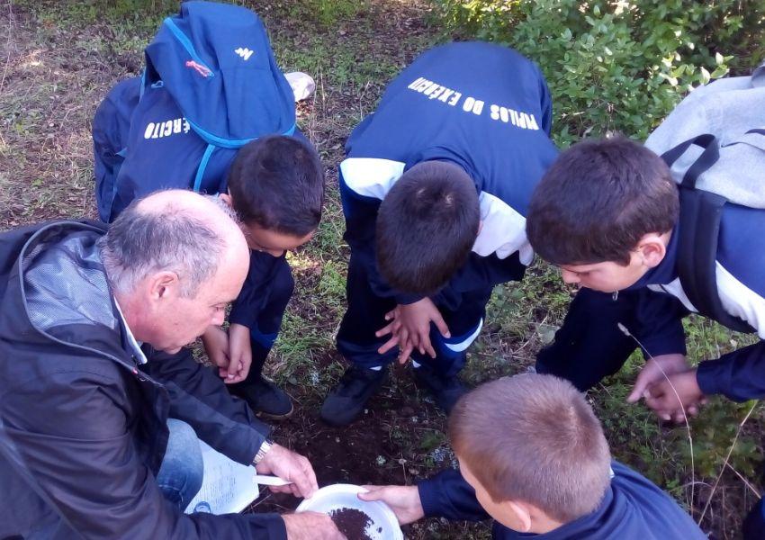 Uma aula no Parque Florestal de Monsanto