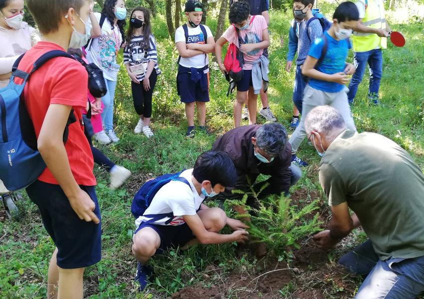 LPN promove Biodiversidade e Floresta em Vila Nova de Poiares