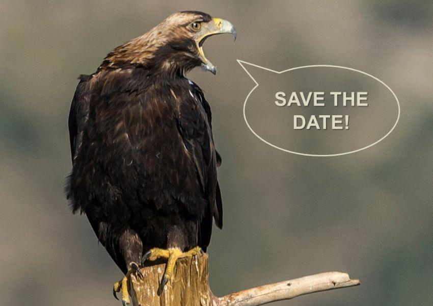 Seminário: Conservação de Aves de Rapina