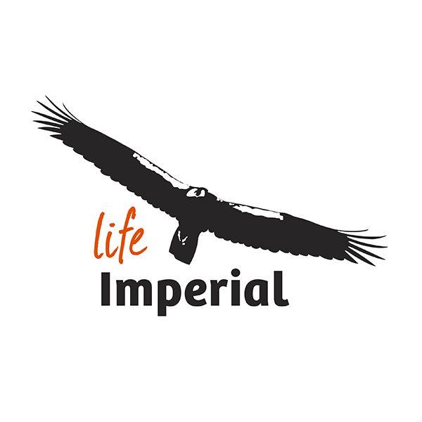 Conservar a águia ibérica imperial