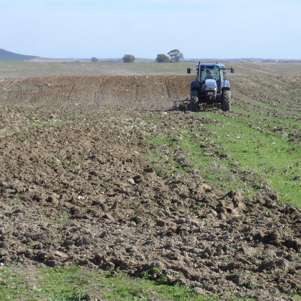 Certificação de sustentabilidade de explorações agrícolas (Janeiro 2012 - Julho 2013)