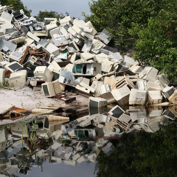 Detetar um crime ambiental