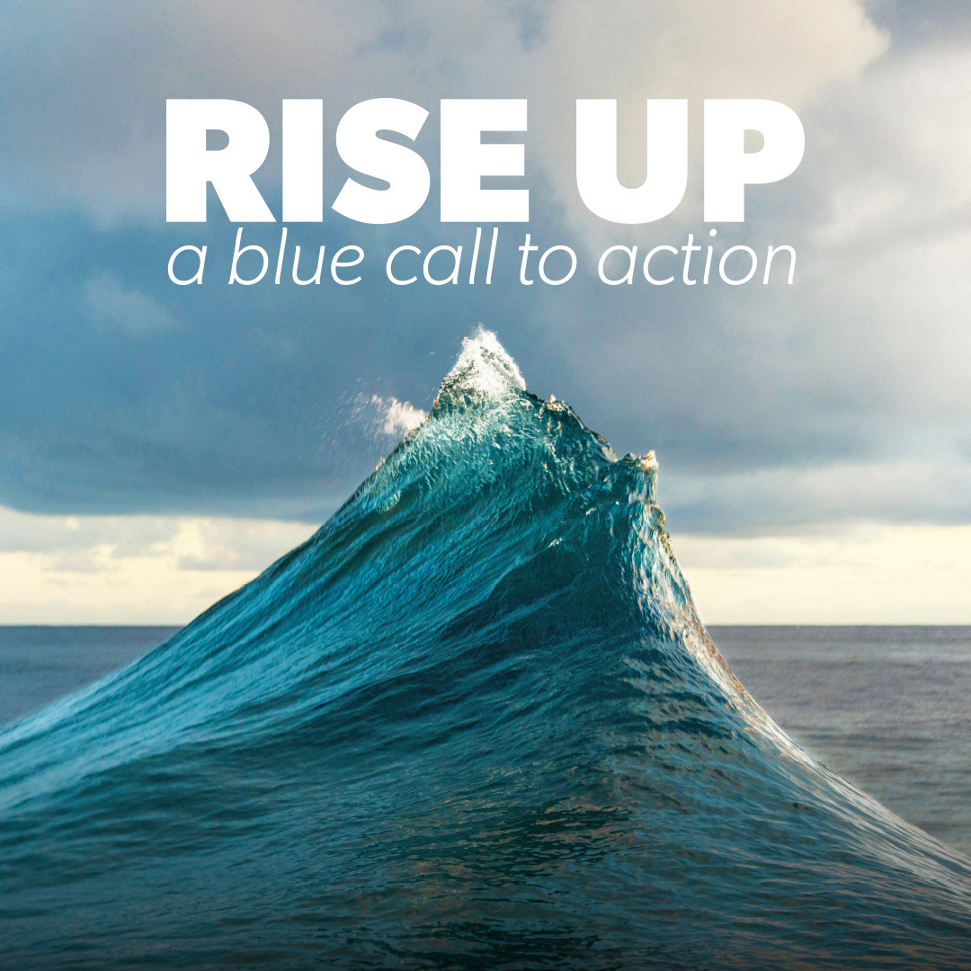 RISE UP a blue call to action