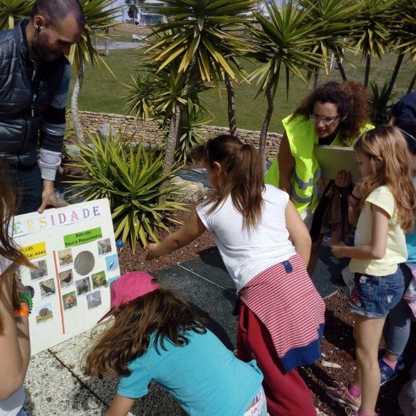 Greenfest: Programa Escolas